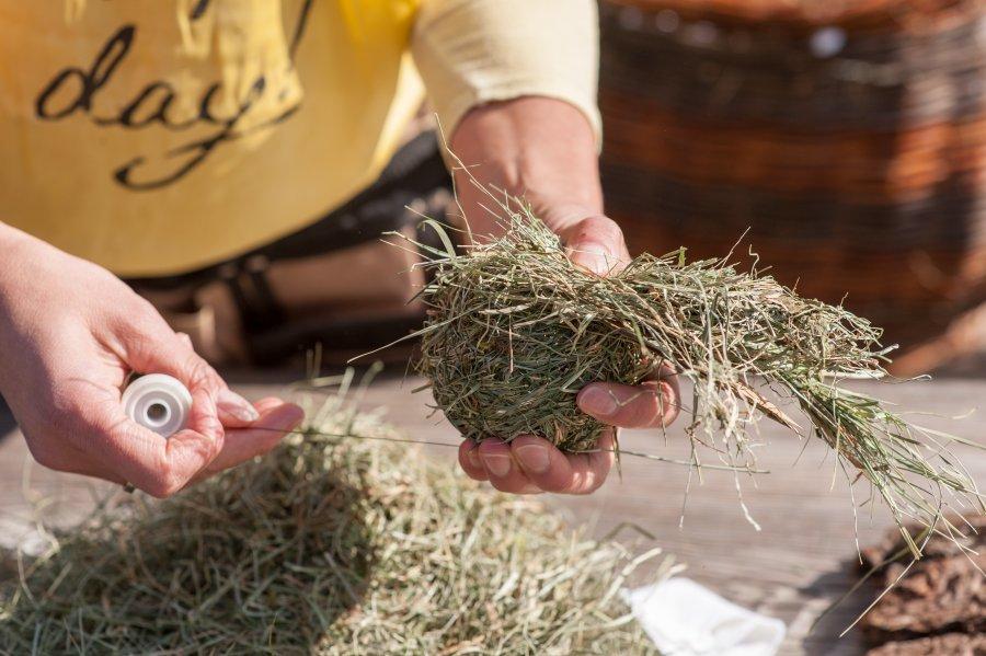 Weihnachtsbasteln Mit Naturmaterialien.Kurs Basteln Mit Naturmaterialien Südtiroler Bäuerinnenorganisation